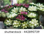 lotus flowers are sold on... | Shutterstock . vector #442890739