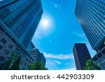 high rise buildings and blue... | Shutterstock . vector #442903309