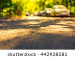 city alley with trees on a... | Shutterstock . vector #442928281