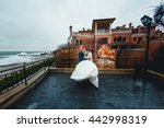 beautiful luxury newlyweds on... | Shutterstock . vector #442998319