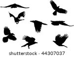collection of japanese ravens... | Shutterstock .eps vector #44307037