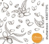 seamless vector pattern with... | Shutterstock .eps vector #443077591