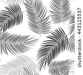 palm leaf vector seamless... | Shutterstock .eps vector #443125537