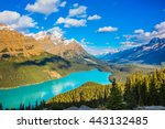 turquoise lake peyto in banff... | Shutterstock . vector #443132485