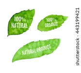100% natural, organic, natural product ecology nature design. Vector green watercolor leaves, natural, organic, bio, eco label and shape on white background. Hand drawn stain.