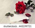 rose on book   vintage effect... | Shutterstock . vector #443199721