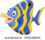 funny angel fish cartoon