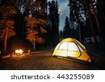 Camping In Forest With Tent...