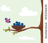 brexit. eu and great britain... | Shutterstock .eps vector #443256634