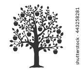 apple tree vector illustration | Shutterstock .eps vector #443258281