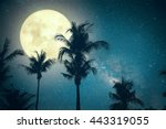 beautiful fantasy palm tree... | Shutterstock . vector #443319055
