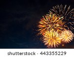 beautiful colorful fireworks on ... | Shutterstock . vector #443355229
