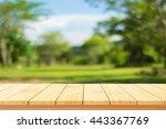 wood floor with blurred trees... | Shutterstock . vector #443367769