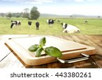 Leaves Desk And Cows And Green...