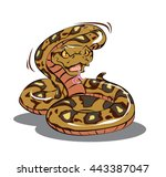 colorful python vector eps   Shutterstock .eps vector #443387047
