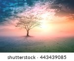 earth day concept  silhouette... | Shutterstock . vector #443439085