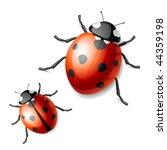 ladybird. vector illustration. | Shutterstock .eps vector #44359198
