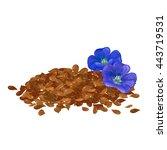linen. flax seeds. flowers of... | Shutterstock .eps vector #443719531
