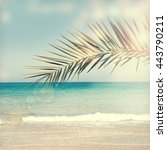 palm leaf and tropical beach.   Shutterstock . vector #443790211