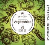 vector background sketch herbs  ... | Shutterstock .eps vector #443811115