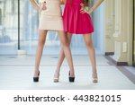 two fashion female dress  body... | Shutterstock . vector #443821015