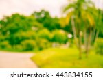 abstract blur city park bokeh... | Shutterstock . vector #443834155