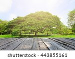 landscap tree and flower in park | Shutterstock . vector #443855161
