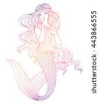 hand drawn mermaid  on white... | Shutterstock .eps vector #443866555
