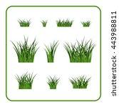 green grass bushes set. nature... | Shutterstock .eps vector #443988811