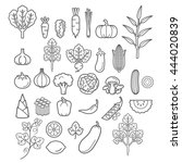 vegetables icons. vector... | Shutterstock .eps vector #444020839
