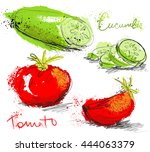 vegetable set   collection of... | Shutterstock .eps vector #444063379
