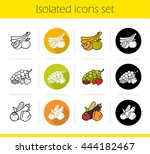 grocery store products... | Shutterstock .eps vector #444182467