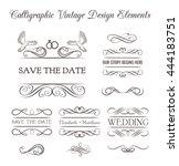 kit of vintage elements for... | Shutterstock .eps vector #444183751