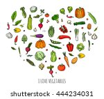 hand drawn doodle vegetables... | Shutterstock .eps vector #444234031