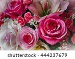 Beautiful Pink Rose Flower...