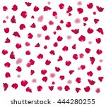 background of beautiful rose... | Shutterstock .eps vector #444280255