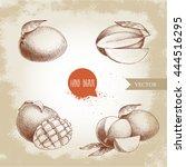 hand drawn mango fruits set...   Shutterstock .eps vector #444516295
