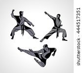 men in a karate pose. martial... | Shutterstock .eps vector #444517351