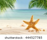tropical beach with various... | Shutterstock . vector #444527785