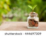 Plant Growing In Savings Coins...