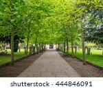 front door and perspective with ... | Shutterstock . vector #444846091