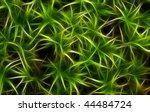 Green Moss Fractal Background