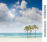 Tropical Sunny Beach Paradise...