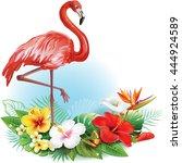 arrangement from tropical... | Shutterstock .eps vector #444924589
