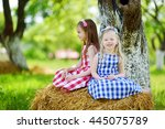 two little sisters sitting on a ... | Shutterstock . vector #445075789