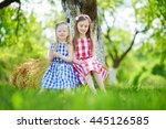 two little sisters sitting on a ... | Shutterstock . vector #445126585