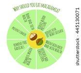health benefits of macadamia....   Shutterstock .eps vector #445130071