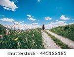 summer trekking   Shutterstock . vector #445133185