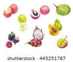 thailand's exotic fruits in... | Shutterstock . vector #445251787