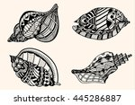 set sea shell with abstract... | Shutterstock . vector #445286887
